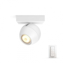 PHILIPS HUE BUCKRAM 50471/31/P7 + SWITCH
